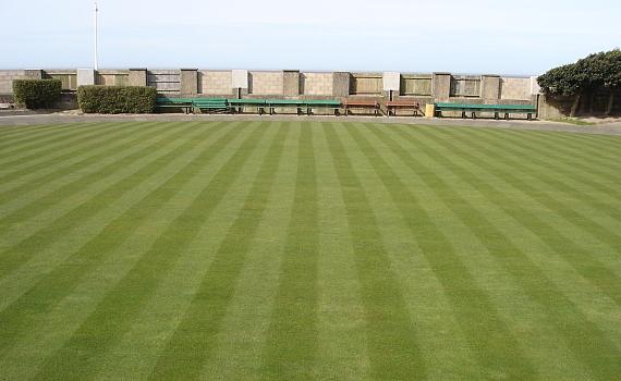 striped bowling green