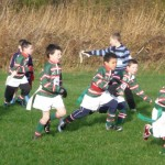 Under 8s another try is on its way v Collegiate