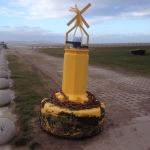Friday Photo: Lost buoy