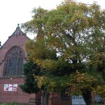 Friday Photo: Church trees